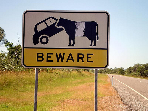 cowsign